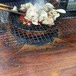 てっちゃんが宮崎観光してホルモン焼きにハマりまくった!?